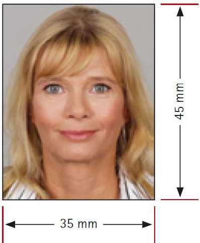 Passfoto für Prüfungsantrag - Vorlage